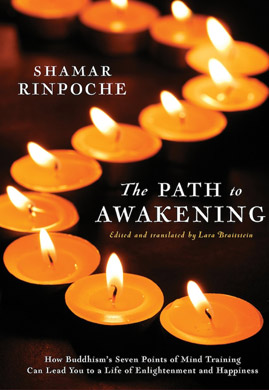 bio_shamarpa-en_path-to-awakening