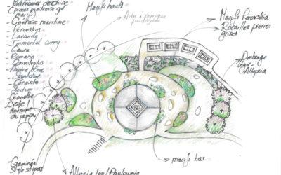 Vue aérienne du projet de plantation de végétaux